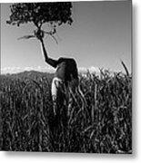 Ahead Of Nature Metal Print