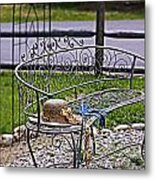 Air Of Elegance Metal Print