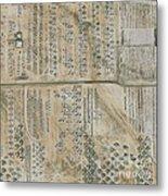 Aircraft Graveyard, Usa Metal Print