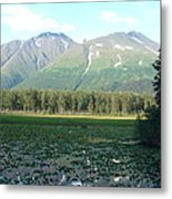 Alaska Lake 2 Metal Print