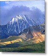 Alaska Range And Foothills Denali Metal Print