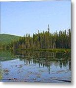 Alaska River Swamp Metal Print