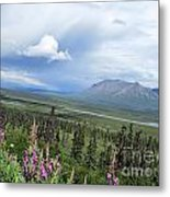 Alaska Through My Eyes Metal Print