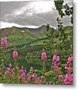 Alaskan Summer Metal Print