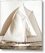 Alcaea, Alcaea Schooner, Yachts Metal Print