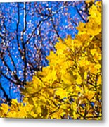 Alchemy Of Nature - Golden Streams Metal Print