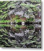 Algonquin Mirror Metal Print