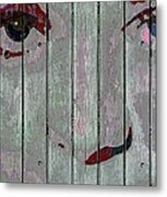 Alice On The Fence Metal Print