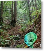 Alien In Redwood Forest Metal Print