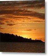 Alight With The Sun Metal Print