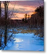 Alive And Well In Maine Metal Print