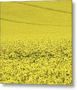All Across The Land 5 Metal Print