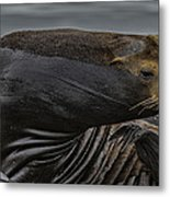 All In A Days Work Metal Print