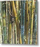 All The Colors Of The Bamboo Rainbow Metal Print