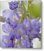 All The Flower Petals In This World 7 Metal Print