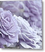 All The Lavender Roses Metal Print