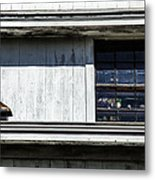 All Types Of Lines Metal Print