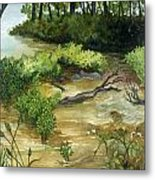Allequash Creek On Trout Lake Metal Print by Helen Klebesadel