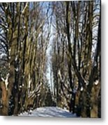 Alley In The Snow Metal Print