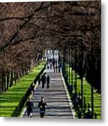 Alley Of Trees With Runners And Joggers Metal Print