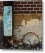 Alley Study Guard Img 5561 Metal Print
