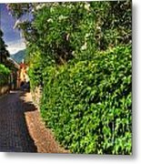 Alley With Green Plants Metal Print