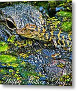 Alligator Mother's Day Metal Print