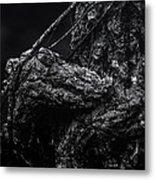 Alligator Tree Metal Print