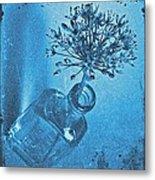 Allium Cyanotype Metal Print