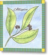 Allspice Illustration Metal Print