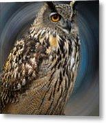 Almeria Wise Owl Living In Spain  Metal Print