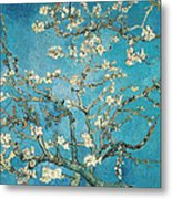 Almond Branches In Bloom Metal Print