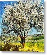 Almond Tree Metal Print