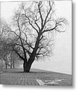 Alone And Lonely Metal Print