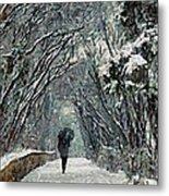 Alone In The  Winter Metal Print