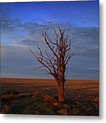 Alone Yet Not Alone Metal Print