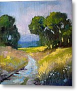 Along A Country Road Metal Print