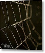 Along Came A Spider Metal Print