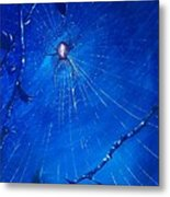 Along Came A Spider. Metal Print