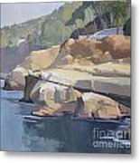 Along Coast Walk In La Jolla, San Diego, California Metal Print