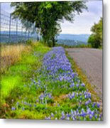 Along The By Ways Metal Print