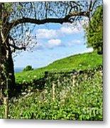 Along The Coastal Path - Lyme Regis 2 Metal Print