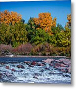 Along The Creek Metal Print