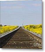 Along The Tracks Metal Print
