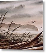Along The Wild Shore Metal Print
