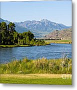 Along Yellowstone  Metal Print