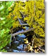 Alpine Creek  Metal Print