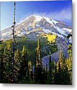 Alpine Glow 2 Metal Print by Marty Koch