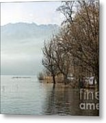 Alpine Lake With Trees Metal Print