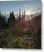 Alpine Meadow Sunrays Metal Print